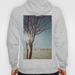 Tree and Cows Hoody
