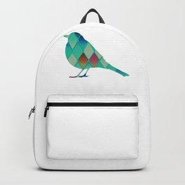 Bird 720 58 Backpack