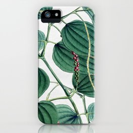 Green leaves I iPhone Case