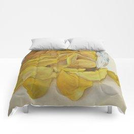 Lays  Comforters