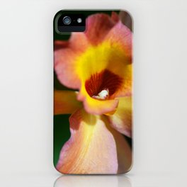 Floral Art - Intimate Orchid 3 - Sharon Cummings iPhone Case