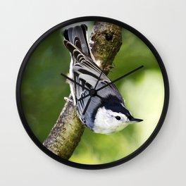 Charming Nuthatch Wall Clock