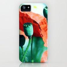 Poppy iPhone (5, 5s) Slim Case