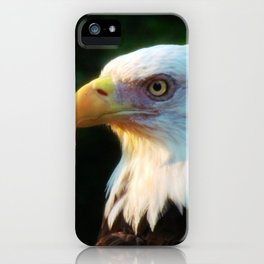 Bald Eagle Portrait iPhone Case