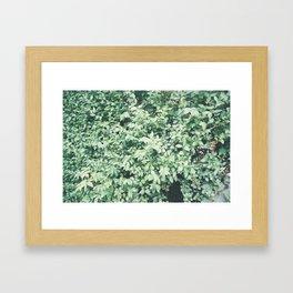 P_03 Framed Art Print