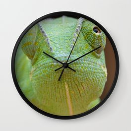 Chameleon Face Wall Clock
