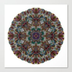 Hallucination Mandala 4 Canvas Print