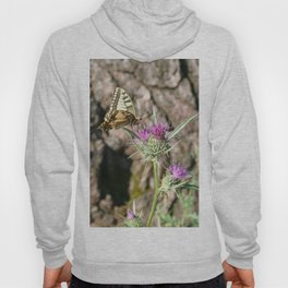Scarce Swallowtail Butterfly and Thistle Hoody