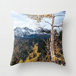 Existing Throw Pillow