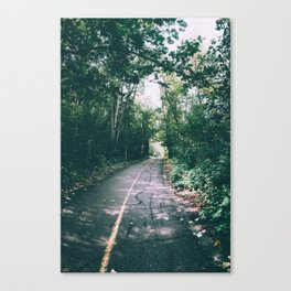 River Valley Path Canvas Print