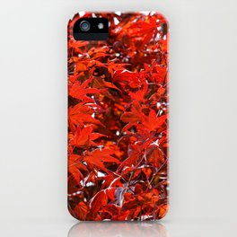 Japanese Red Maple Leaves iPhone Case
