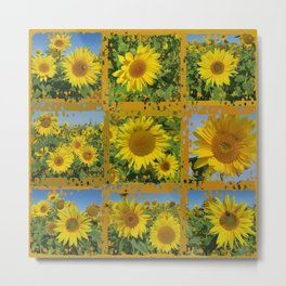 Collage of yellow sunflowers in summer, cheerful yellow flowers in front of bright blue sky Metal Print