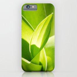 Twirl iPhone Case