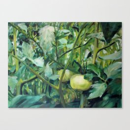 Sweetwater Green Tomatoes Canvas Print