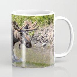 Moose standing in the water Coffee Mug