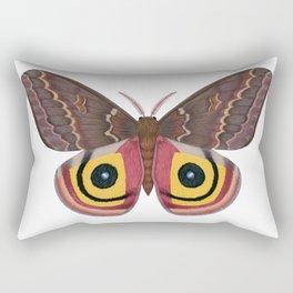 io moth (Automeris io) female specimen 2 Rectangular Pillow