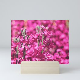 Hot Pink Mini Art Print