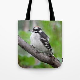 Downy Woodpecker (juvenile male) Tote Bag