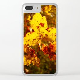 Colorful Autumn 1 Clear iPhone Case