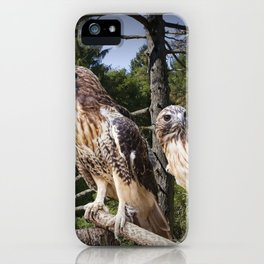 Pair of Red-tail Hawks iPhone Case