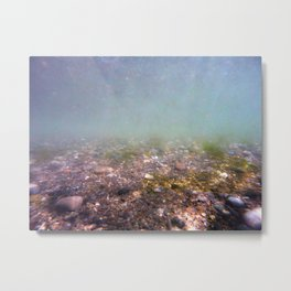 Under the sea 1 Metal Print