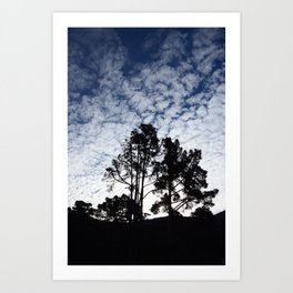 Montana D'oro clouds Art Print