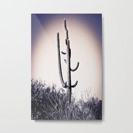 Cactus #18 Metal Print