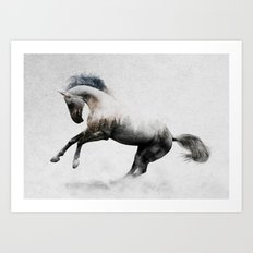 White Stallion Art Print