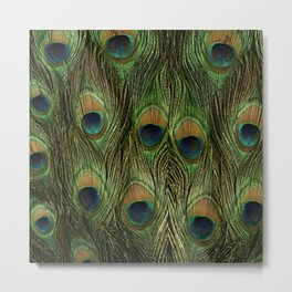 Peacock Feathers Photography Art Metal Print