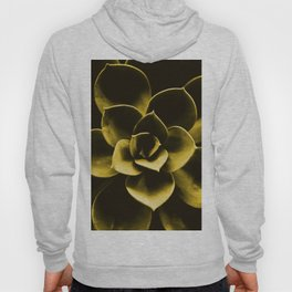 Succulent Plant In Olive Color #decor #society6 #homedecor Hoody