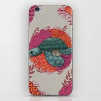 turtle iPhone & iPod Skins featuring Turtle by ErDavid