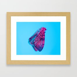Bugged #12 Framed Art Print