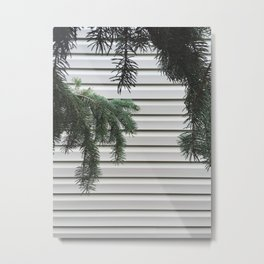 Hanging Pines Metal Print
