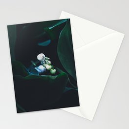 Lily of the Valley 2 Stationery Cards