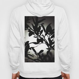 Dreaming of You in Moonlight Hoody