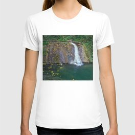 Autumn leaves in the waterfall T-shirt