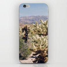 Joshua Tree Cactus Garden iPhone Skin