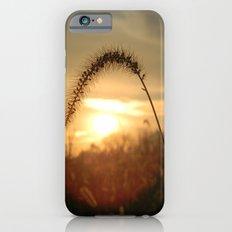 Field Grass Sunrise iPhone 6s Slim Case