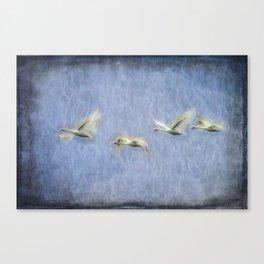 Migrating Swans Art Canvas Print