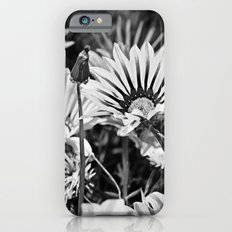 Desert Daisies (bnw) - Daisy Project in memory of Mackenzie iPhone 6s Slim Case