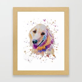 Labrador portrait Framed Art Print