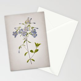 Vintage Phlox Botanical on Parchment Stationery Cards