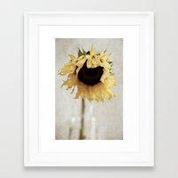 sunflower Framed Art Prints featuring sunflower by Bonnie Jakobsen-Martin