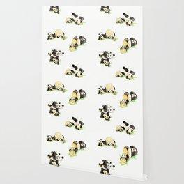 Panda and Cub Wallpaper