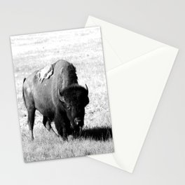 Big Daddy On His Range Stationery Cards