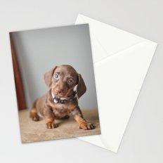 Dachshund Puppy Stationery Cards