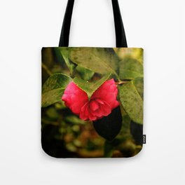 Early Pink Flower Blooms as Snow Flake settles on top Tote Bag