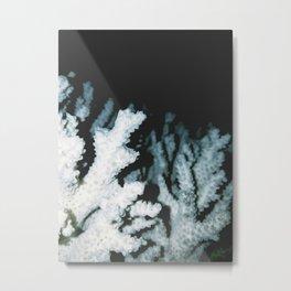 dry coral Metal Print