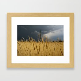 Storm Over Wheat  Framed Art Print