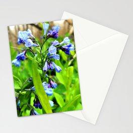 Bluebells 2 Stationery Cards